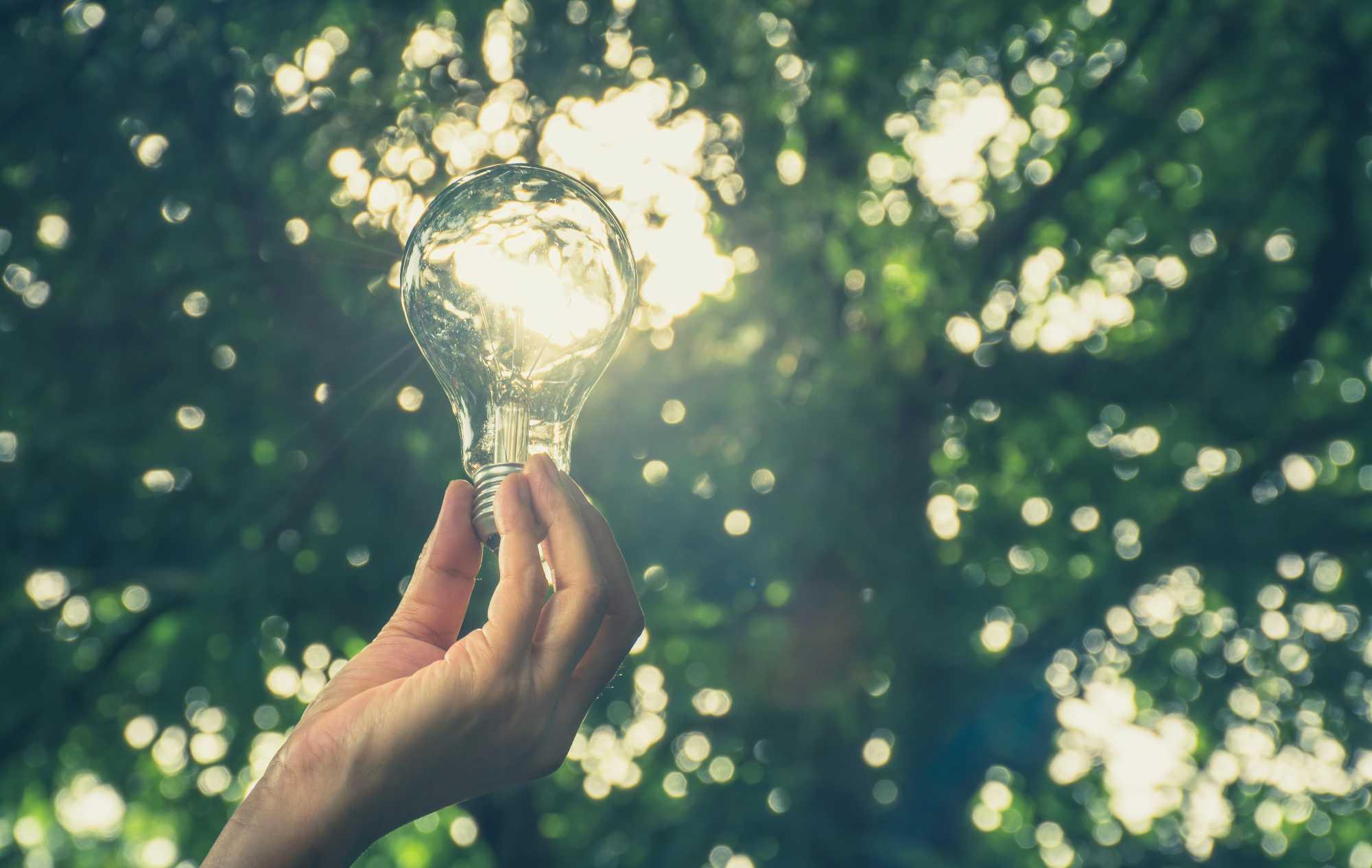 energia rinnovabile SVAI_