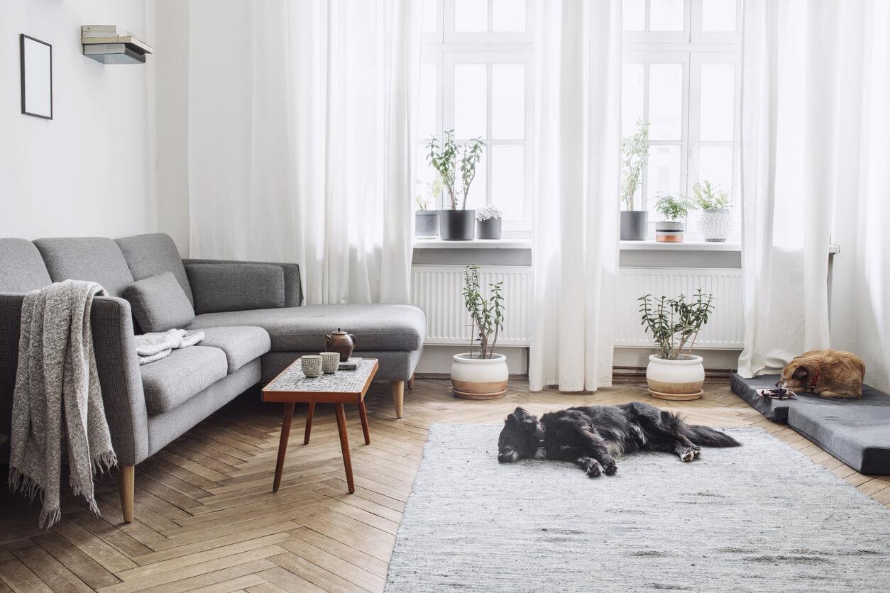 pavimenti e rivestimenti SVAI_parquet chiaro spina di pesce casa moderna